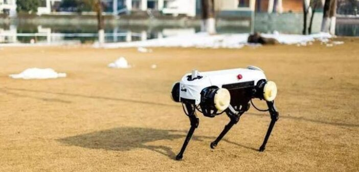 Jueying robot dog that can pick itself up being knocked over