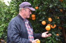 SA to kick off key new citrus export deal