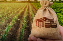 Land Bank seeks support for split to repay debt